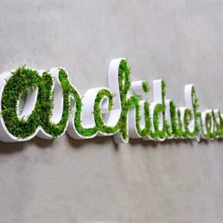 Logo vegetal Archiduchesse