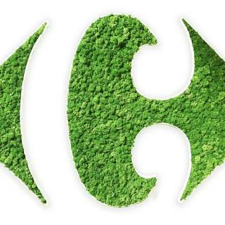 Logo vegetal Carrefour