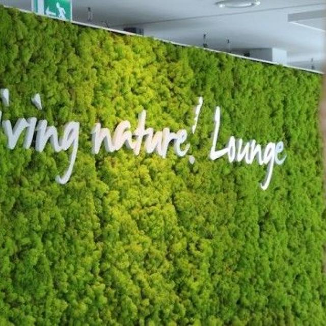 mur végétal stabilisé avec logo - 1