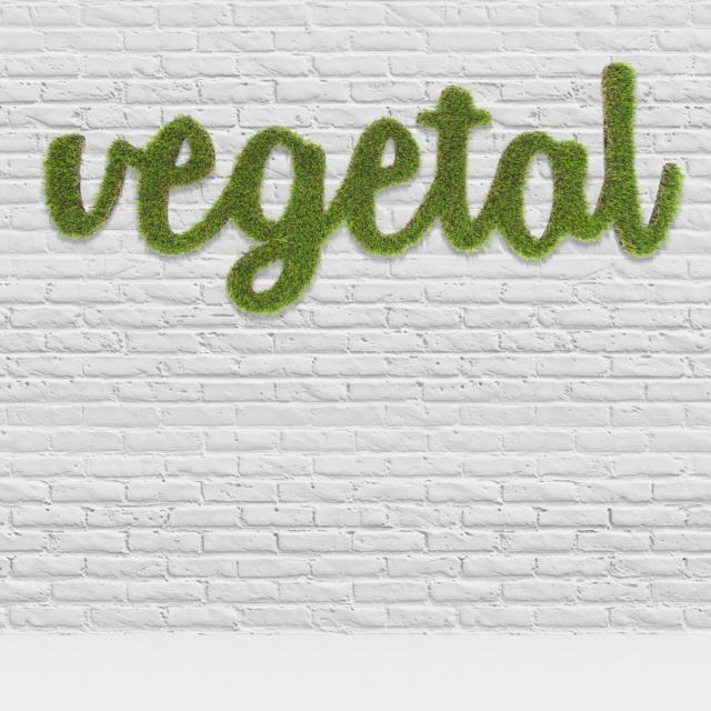logo vegetal synthetique - 4